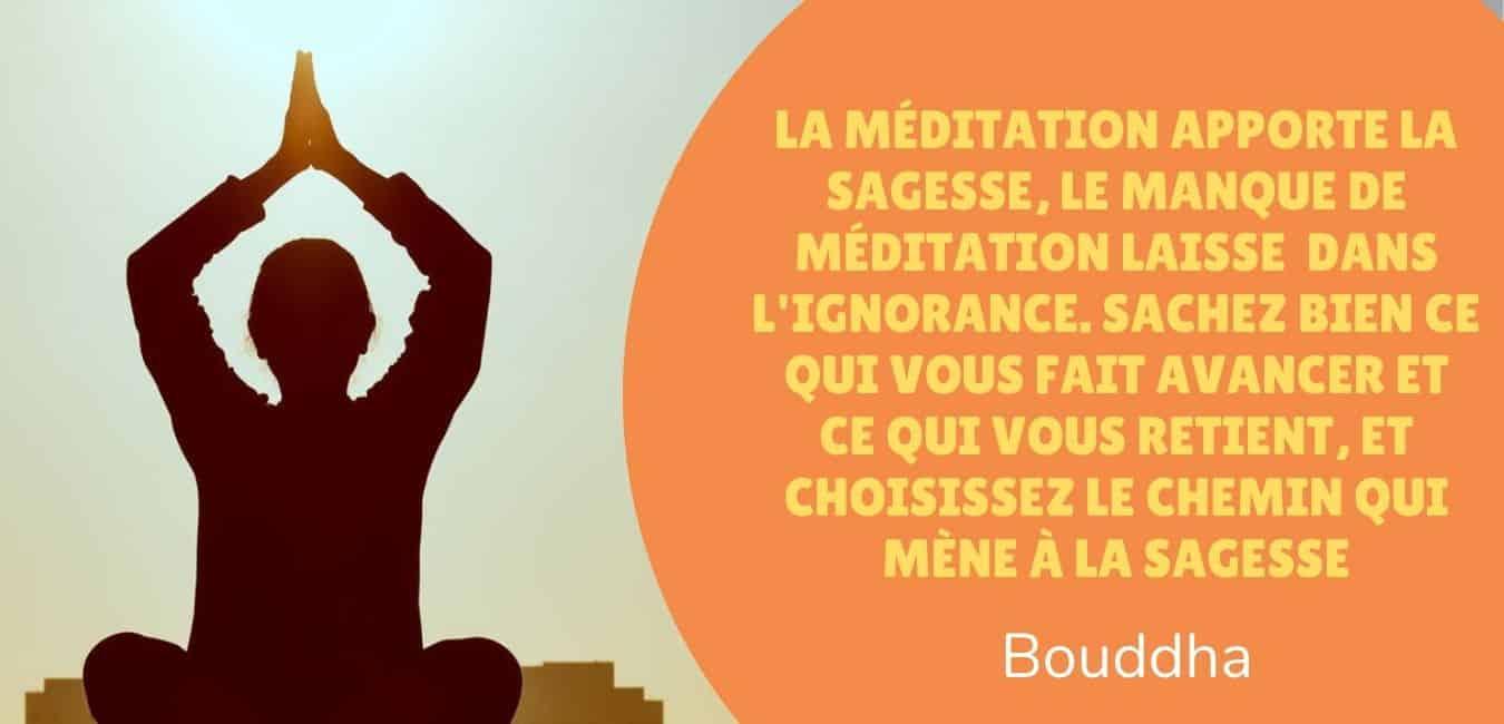 «La méditation apporte la sagesse; le manque de méditation laisse l'ignorance. Sachez bien ce qui vous fait avancer et ce qui vous retient, et choisissez le chemin qui mène à la sagesse. -Bouddha